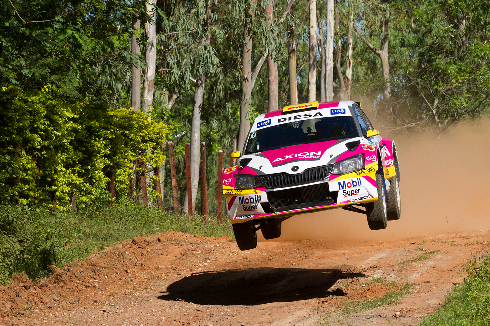 Gustavo Saba: Fourth consecutive Paraguayan title for ŠKODA | Champs Around the World