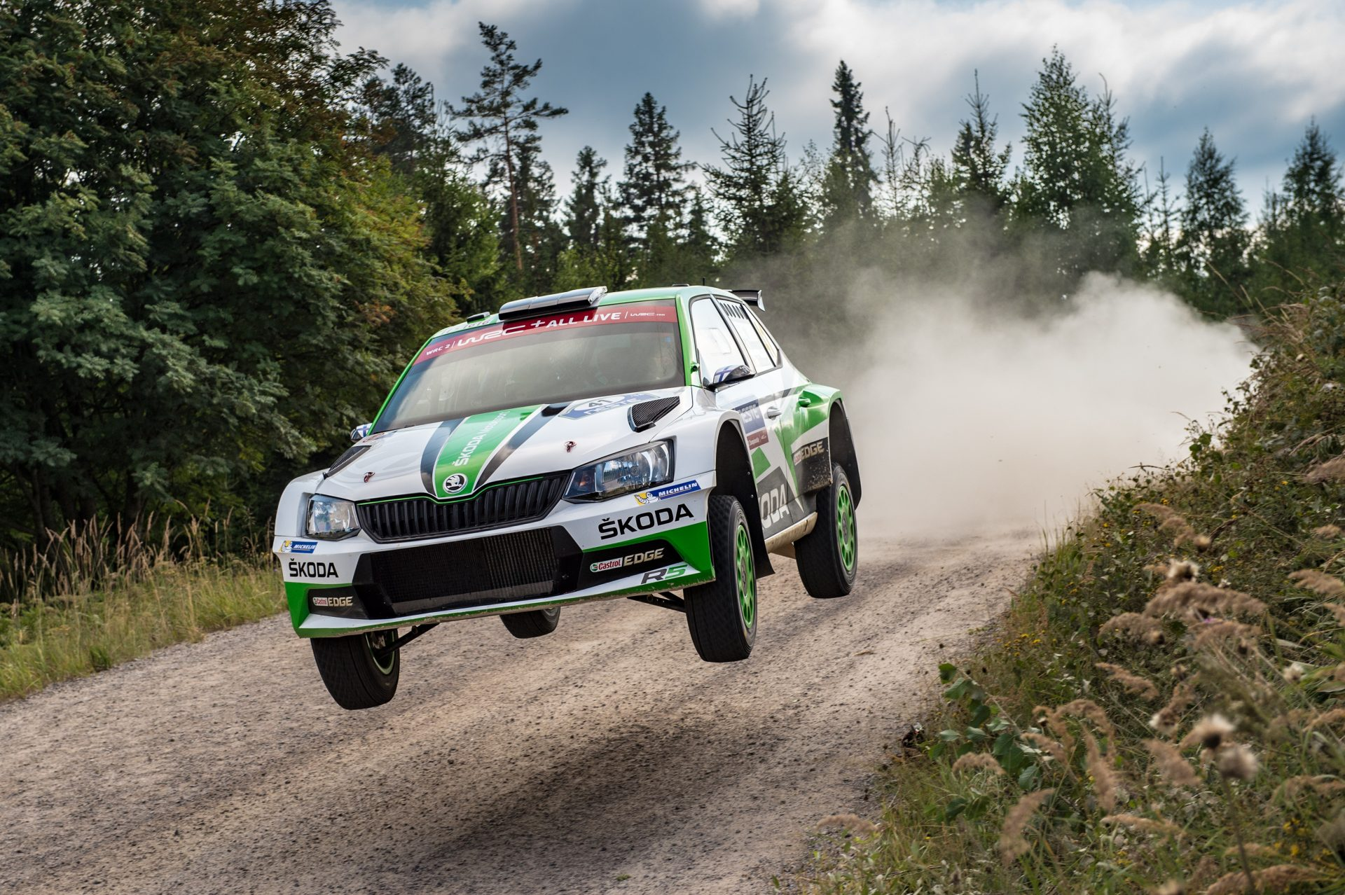 ŠKODA Motorsport in 2019: WRC 2 Pro and Customer Teams