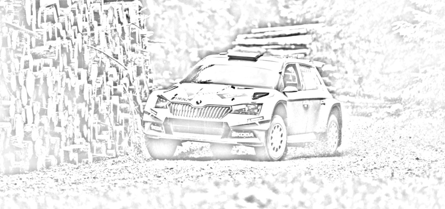 Download ŠKODA FABIA Rally2 evo colouring book